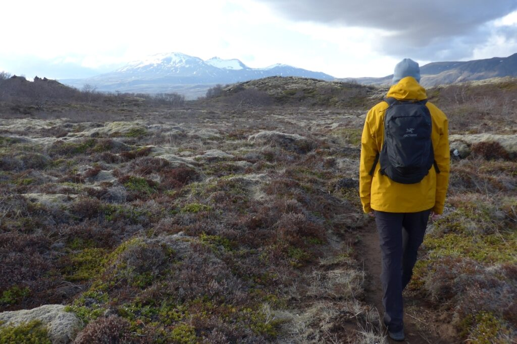 Andrej wandert in einer kargen Landschaft, die von Gräsern, Moosen und Flechten bewachsen ist. Im Hintergrund sieht man einen schneebedeckten Bergrücken.